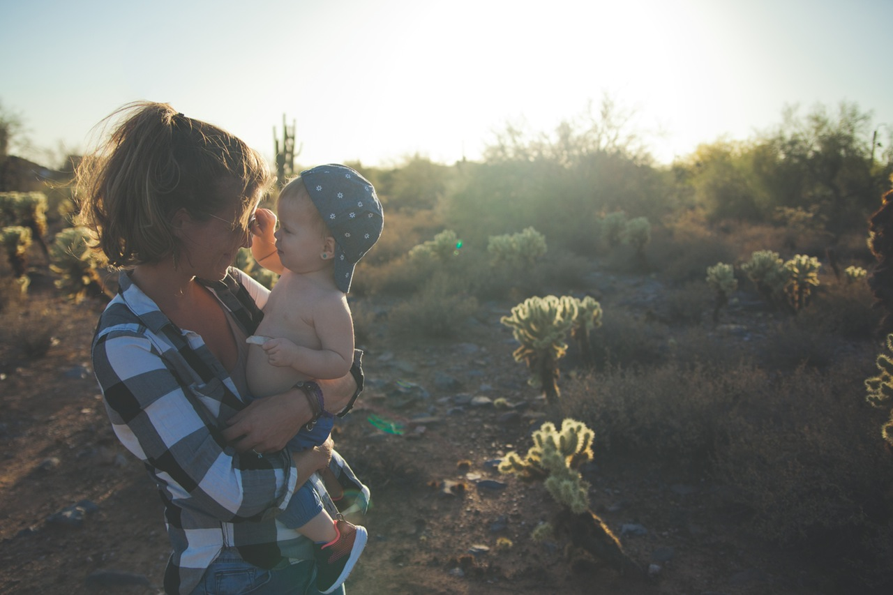 自然栽培・自然農法。固定種・在来種のタネを入手できるサイト4選