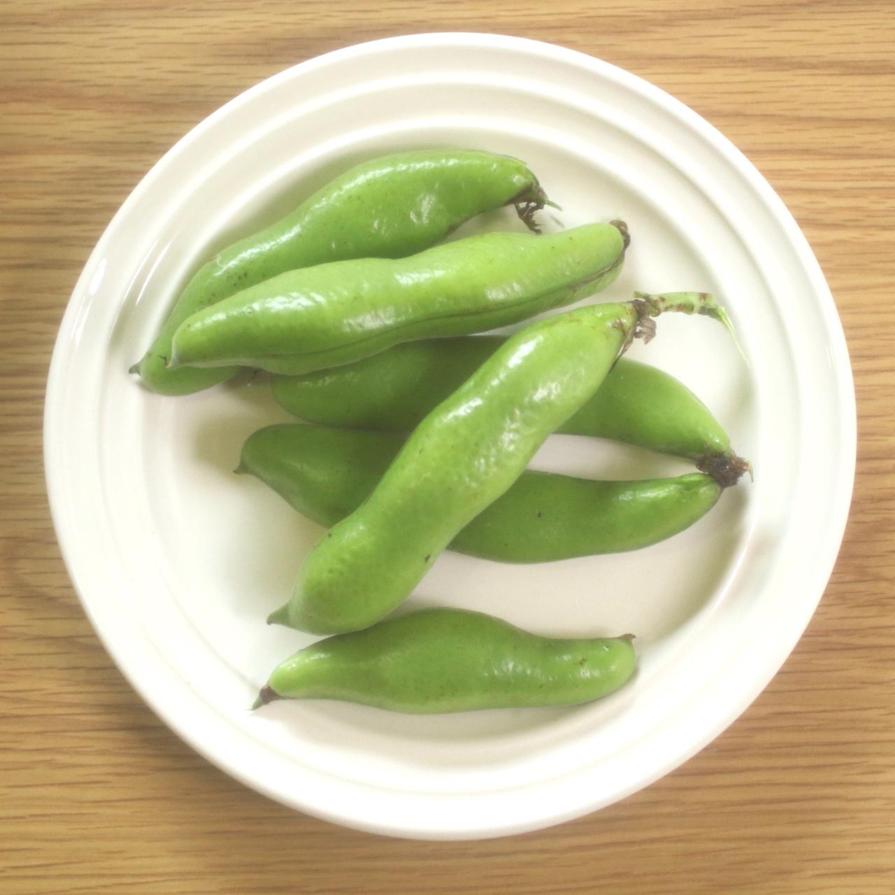 自然栽培で空豆を沢山収穫したら、豆板醤を作ってみよう!保存食・保存調味料